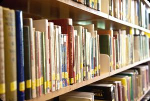 Library_Shelves